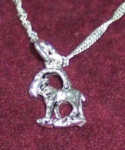 Zodia Capricorn din argint, pe lant de argint