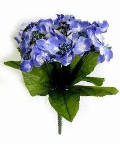 Florile sanatatii - remediu pentru o viata lunga