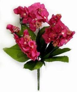 Florile dragostei si sinceritatii