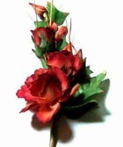 Trandafirii rosii ai dragostei