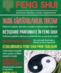 Universul Feng Shui Nr. 5
