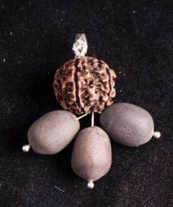 Pandantiv cu Rudraksha si trei seminte de Lotus