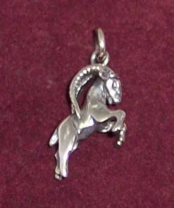 Pandantiv din argint - Capricorn