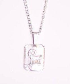 Pandantiv din argint pentru femei - Capricorn