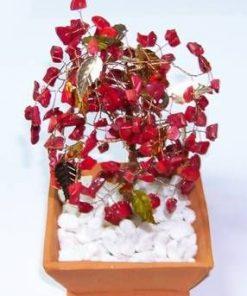 Copacel cu cristale de coral