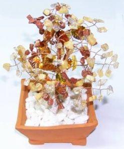 Copacel cu cristale de citrin, piatra soarelui maro