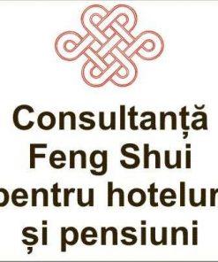 Consultanta Feng Shui pentru hoteluri/pensiuni in afara BV