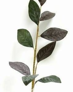 Frunza de magnolie - 85 cm